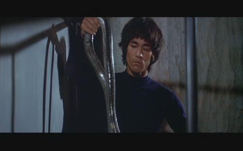 纪念李小龙:《龙争虎斗》图片