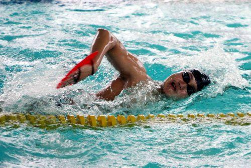 图文:张琳昆明备战全运会 训练自由泳