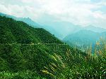 2、牯牛降主峰穿越(适合背包类型:登山、丛林穿越)