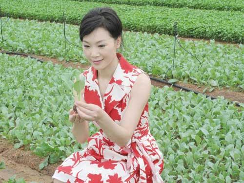 吕薇在现代化菜园参观