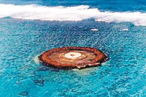 日本决定明年在冲之鸟礁建军事基地 以遏制中国