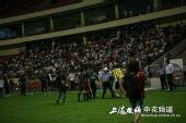 图文:[中超]上海VS长春 警察阻止谢晖打何志彪