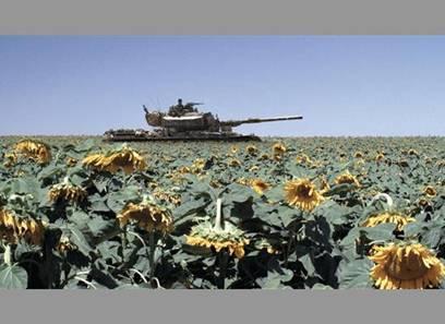 影片中99.9%的画面都在坦克里取景,主角一直处于大汗淋漓的状态。