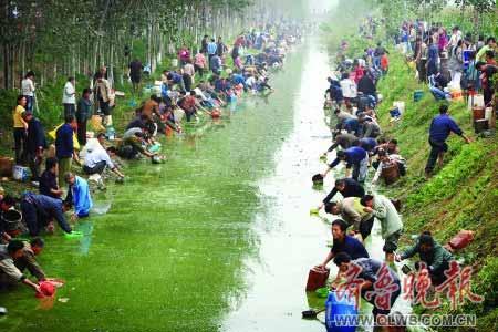 河边满是捞油的村民。李军 摄