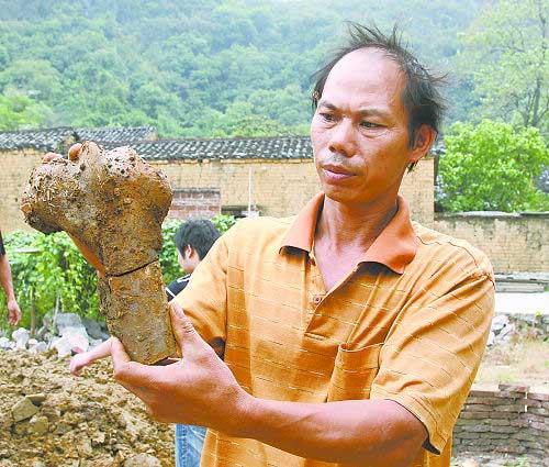 这是一个关节骨。刘桂友说村里杀牛从没看见有这么大的骨头。