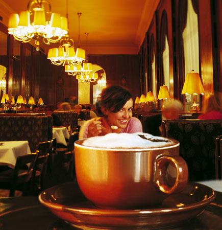 维也纳四季可尽享各色美食
