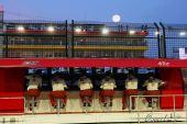 图文:F1新加坡站第一次练习 法拉利车队