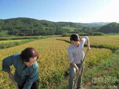 艾叶与母亲下田耕地