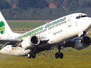 客机遭遇鸟群撞击。