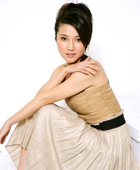 颜丙燕早年曾出演过《红十字方队》、《甘十九妹》等热播剧
