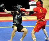 图文:全运会武术比赛 河北队戴丹婷重拳出击