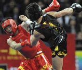 图文:赵光勇夺得武术散打男子67.5公斤级冠军