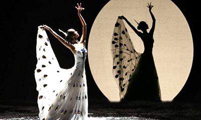 嘉宾介绍:   杨丽萍,1958年生于云南,洱源白族人,自幼酷爱舞蹈
