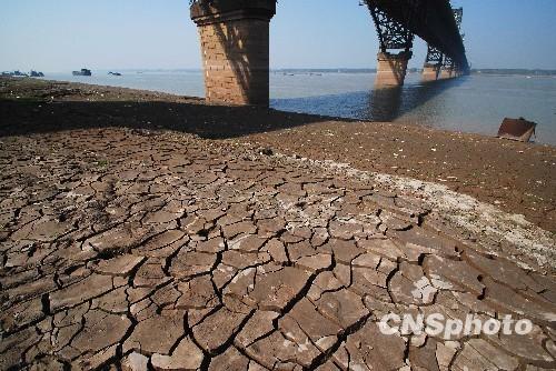 10月23日,长江九江段水位降低,裸露出来的江滩上,一道道宽宽的裂缝。中新社发胡国林 摄