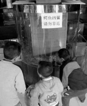 几个小孩在围着观看