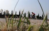 图文:自行车男子公路个人赛 选手在比赛中骑行