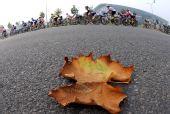 图文:女子自行车公路个人赛 众多选手骑行中