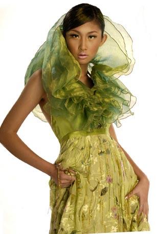 王诗文 2005第十一届中国模特之星大赛冠军 2008年度中国最佳职业时装模特