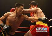 图文:中国散打超级联赛 边茂富重拳不幸打空