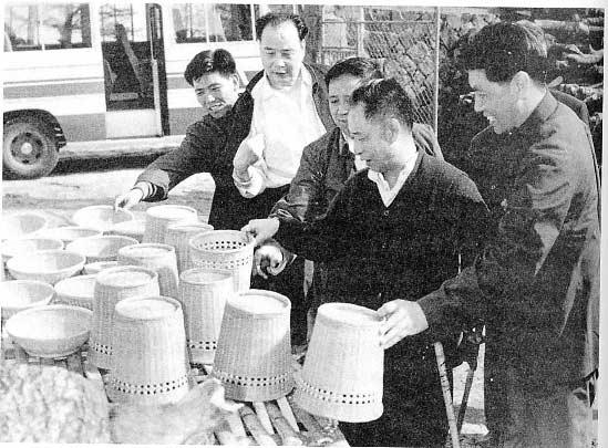 陪同胡耀邦同志在浙江视察。