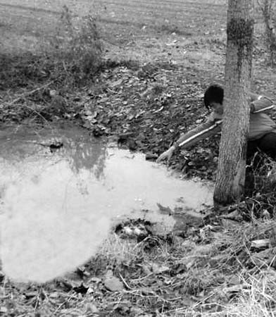 ▲陶飞在现场描述当时水坑救人的场景。
