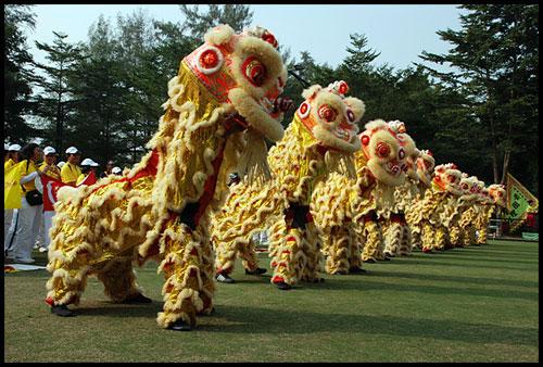 舞龙舞狮受关注-搜狐