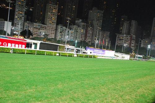香港赛马会和赛马场