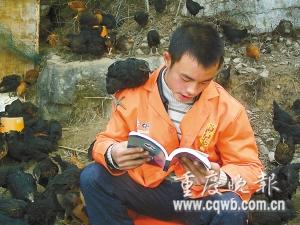 王明东喜欢看书,即使在养鸡场也看得津津有味。