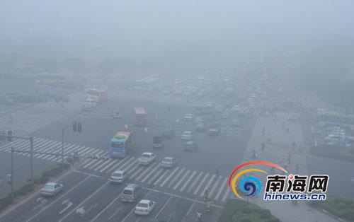 被大雾笼罩的海口市龙昆南路(南海网记者 张茂 摄)