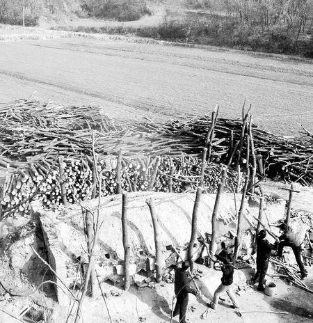 森林公安正在捣毁非法炭窑