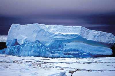 南极洲,2.5亿年前的气候避难所