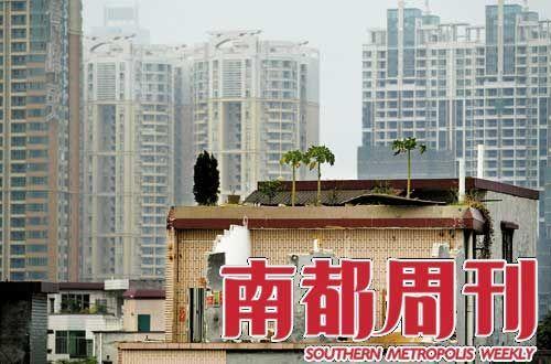 2007年10月8日,广州猎德村,已开始拆迁的房屋天台上,残留的花木将被高楼取代。