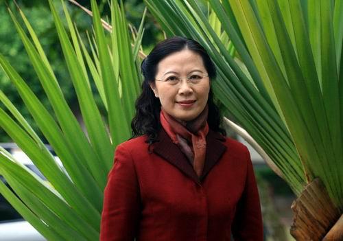 海南省委对外宣传办公室、省政府新闻办公室副主任 孙苏