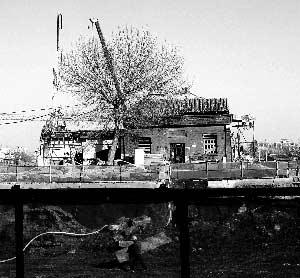 中央的老房子就是流浪猫栖息地。本报记者 杨小嘉 摄