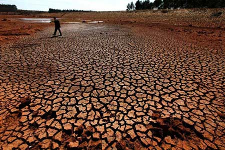 2月2日,昆明市石林县高石哨绿塘子水库干旱的露出了池底。