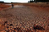 云南遭50年一遇特大旱灾 385万人饮水困难(图)