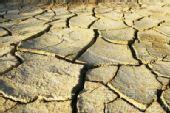 云南大旱800万亩地绝收 昆明64万人饮水困难