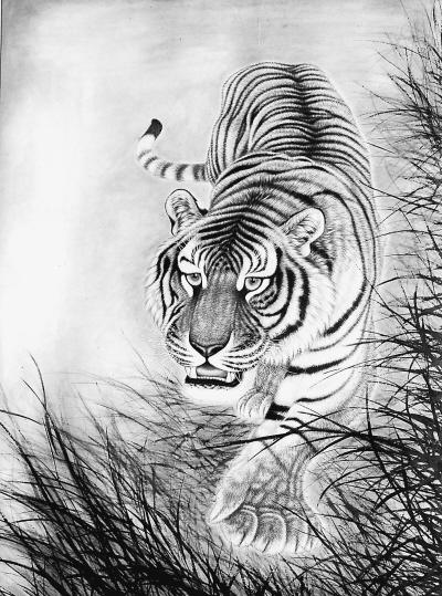 画素描老虎步骤图解