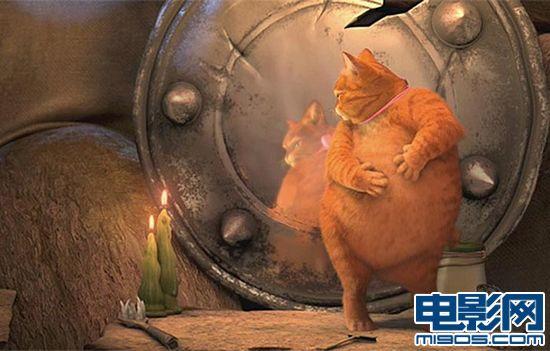 侠客猫变身加菲猫