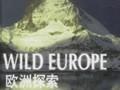 欧洲探索:肇始之初