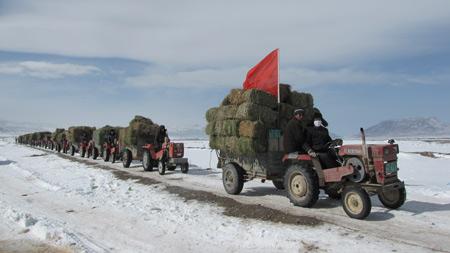 向灾区运送救灾物资的车队