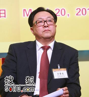 国家开发投资公司总裁王会生(搜狐-王玉玺/摄)
