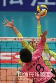 图文:天津女排3-0上海 张磊跃起扣球
