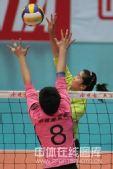 图文:天津女排3-0上海 张磊跃起拦网