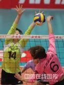 图文:天津女排3-0上海 朱慧菁正在扣球
