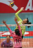 图文:天津女排3-0上海 李娟正在扣球
