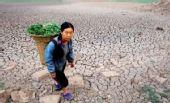 图:池塘已经完全干涸 村民在穿行