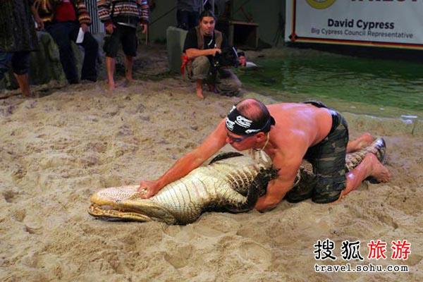 梦见老公和鳄鱼搏斗