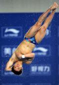 图文:邱波男子10米台夺冠 邱波在比赛中