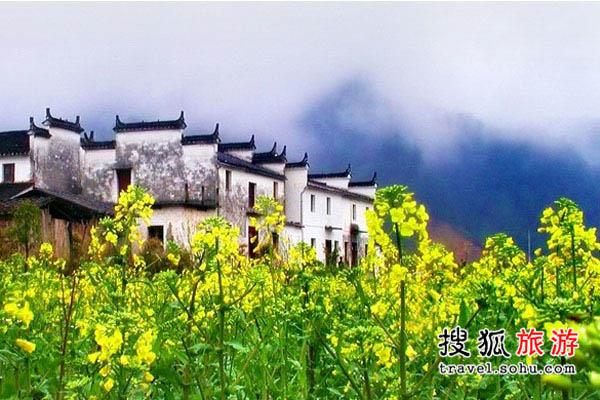 江西婺源 最经典的油菜花观赏地